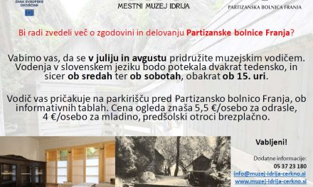Zgodovina in delovanje Partizanske bolnice Franja