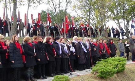 Gregor Strmčnik, Kučibreg/Hrvaška